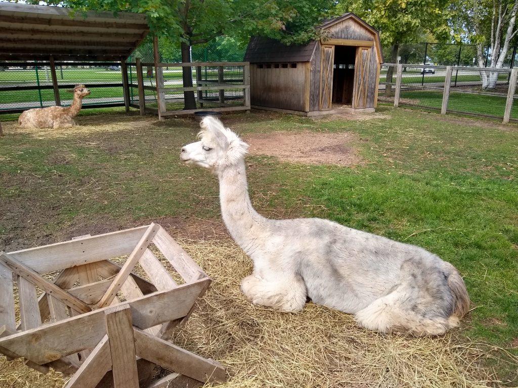 Menominee Park Zoo, Oshkosh, Wisconsin