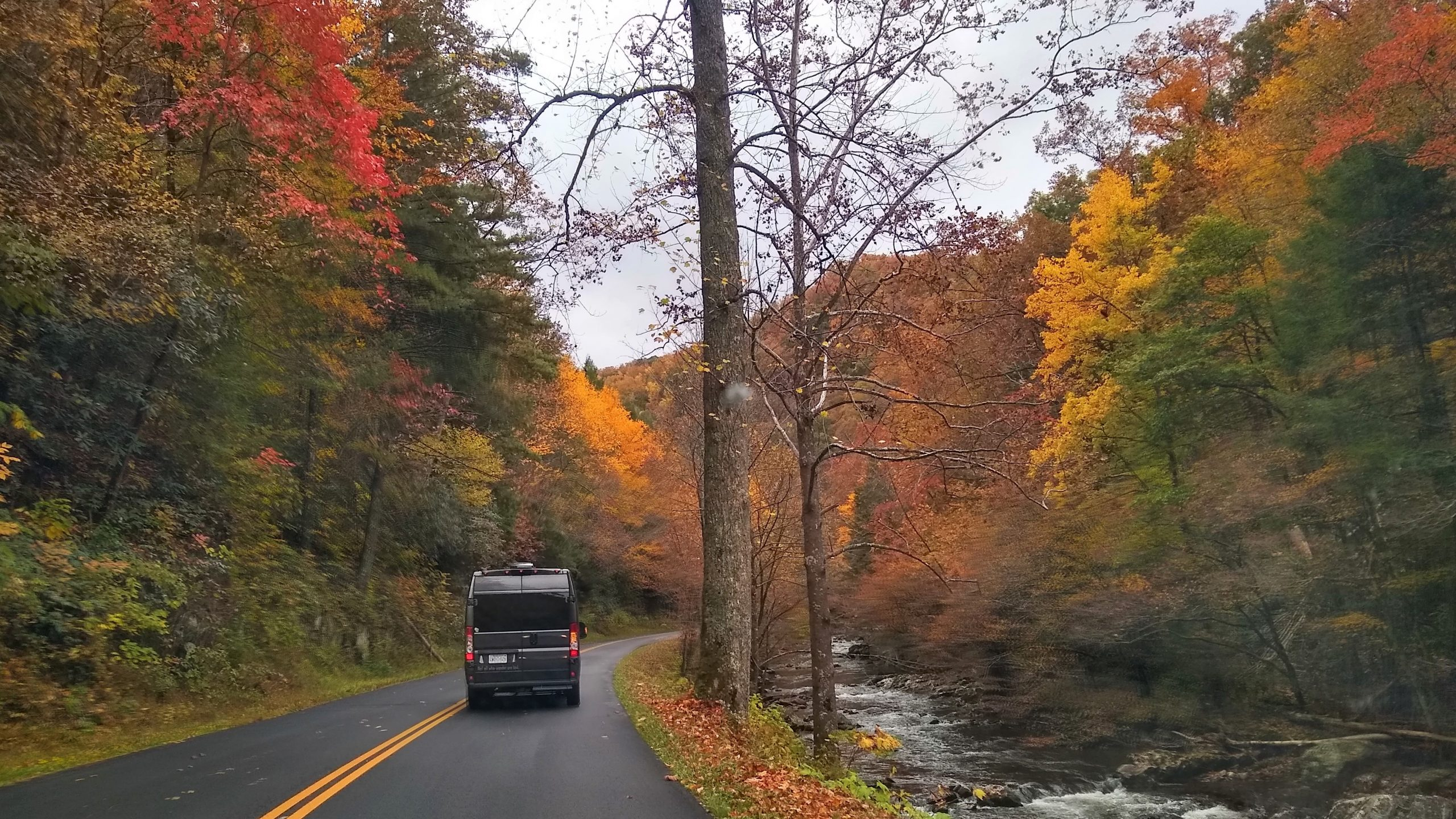 WanderVan fall color