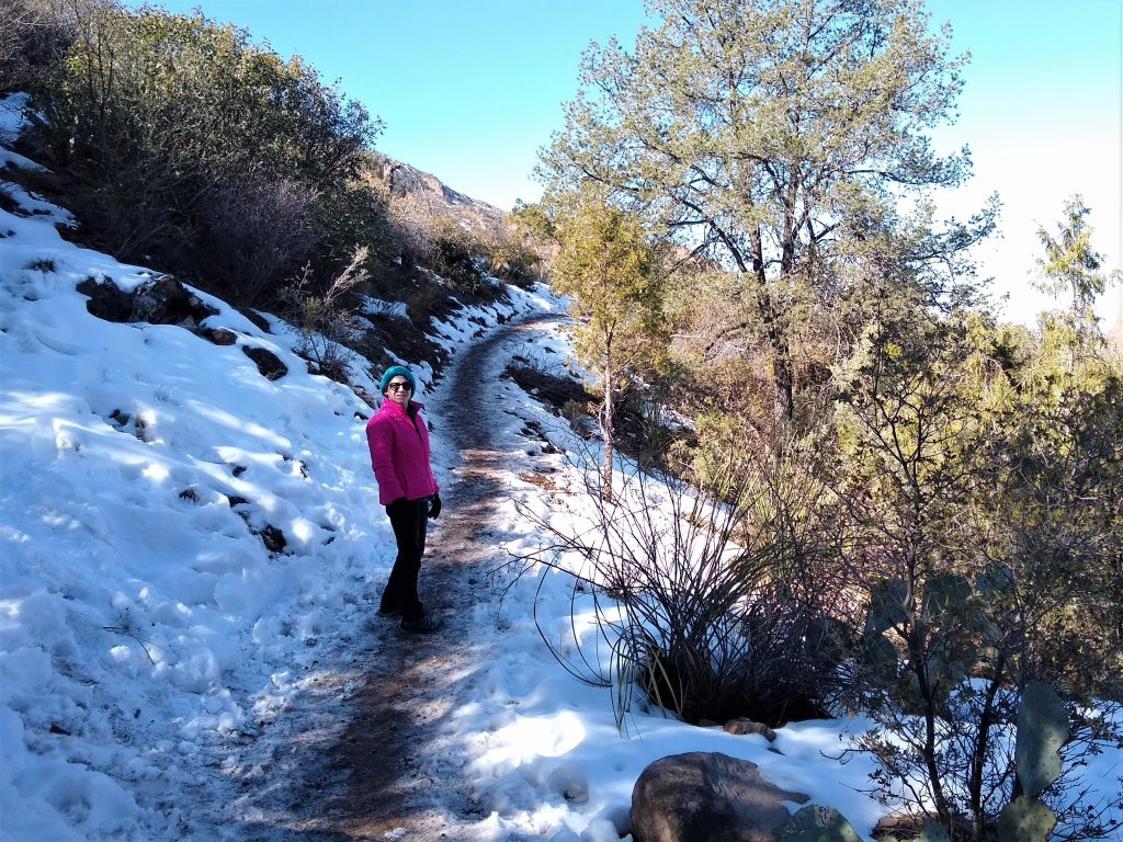 Hiking in the Chisos Basin in Big Bend, elevation above 5,000 ft